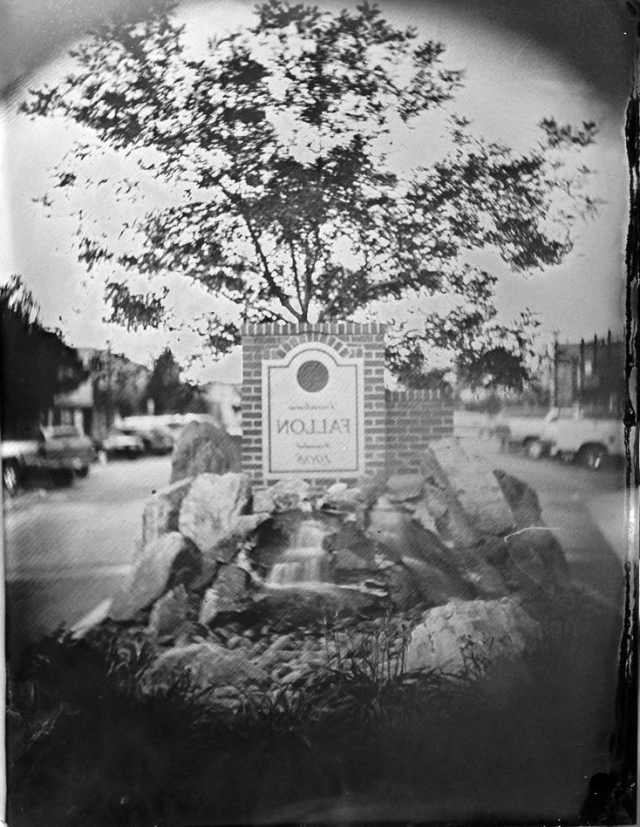 Fallon Tintype